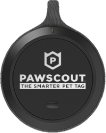 Pawscout Tag
